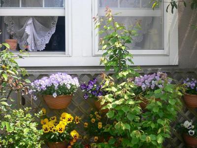 玄関横ズーム1