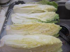 白菜を縦4つに切る