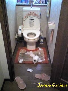 今度はトイレかよ・・・