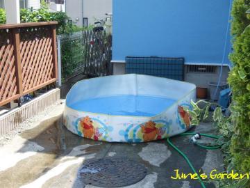 我が家のプール♪