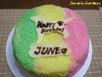 ジュンのバースデーケーキ 2007年バージョン