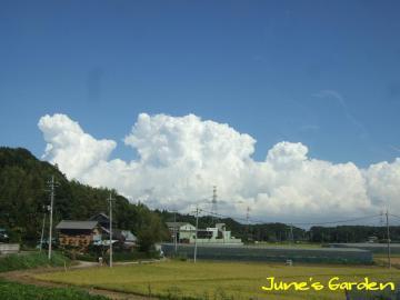 真夏のような雲です