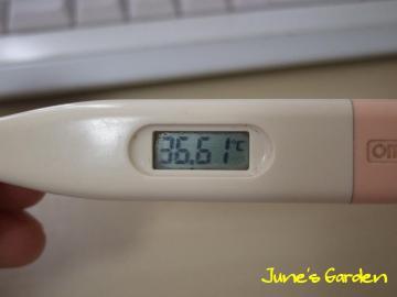 今朝の体温