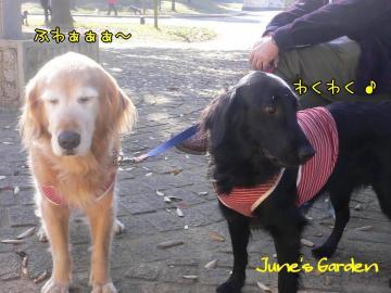 花桜子ちゃん姉妹