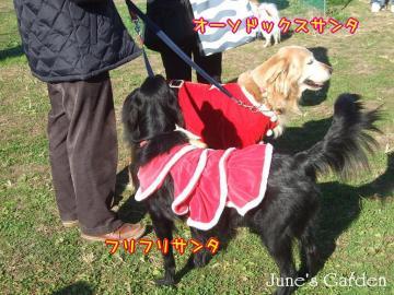サンタな花桜子ちゃん