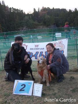 犬種別ハンデ戦2位入賞