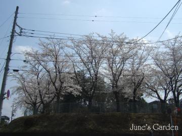 08-04-03_29.jpg