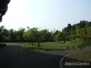 水飲み公園