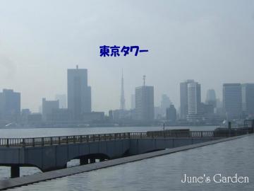 08-04-27_44.jpg