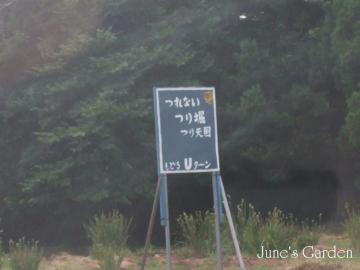 08-08-10_084.jpg
