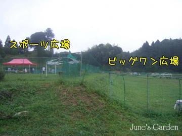 08-09-21_5900.jpg