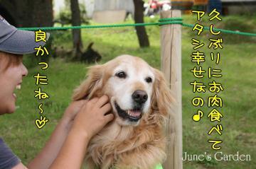 20080810_99_59.jpg