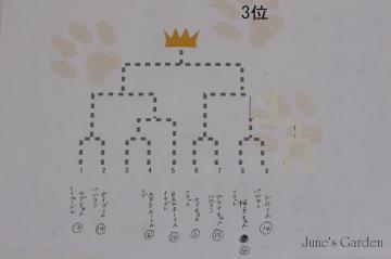 20080810_99_92.jpg