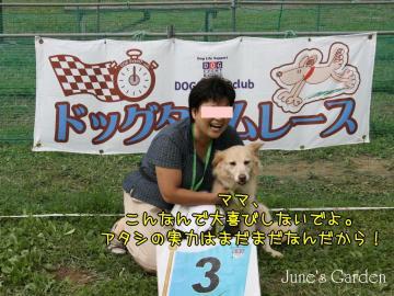 20080831_99_78.jpg