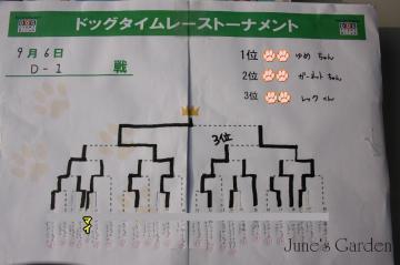 20080906_99_80.jpg
