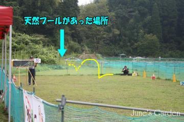 20080907_99_100.jpg