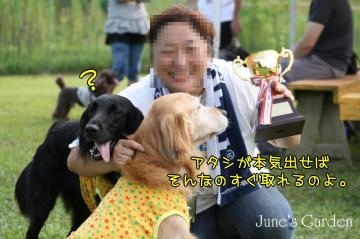 20080907_99_120.jpg