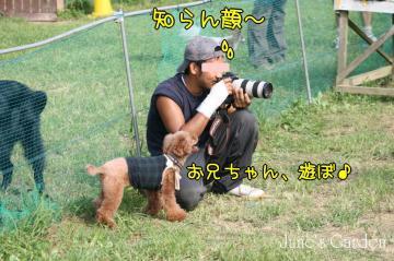 20080907_99_159.jpg