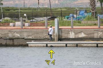 20080915_99_22.jpg