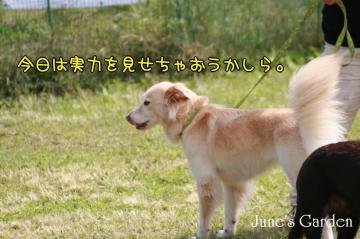 20081005_99_99.jpg