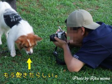 2008_0906F100100.jpg