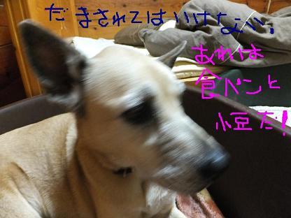 DSCF4027.jpg