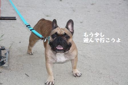 下関(熊野公園にて)