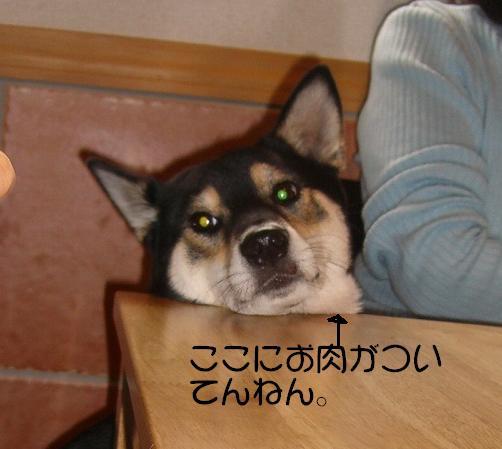 oniku.jpg