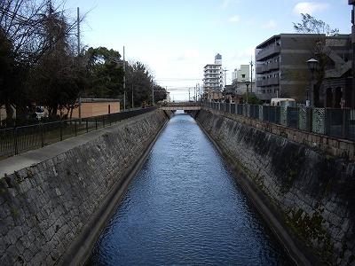 琵琶湖疎水20100101