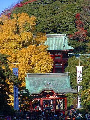 鶴岡八幡宮の大銀杏200212xx