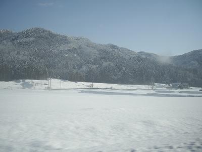 雪景色4-20100220