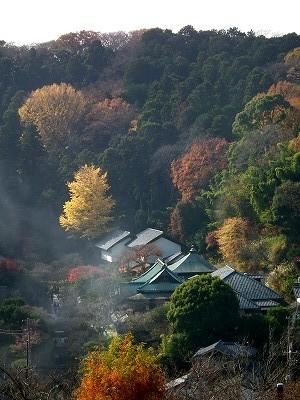 円覚寺弁天堂からの東慶寺20101205