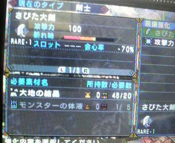 2010120116210000.jpg