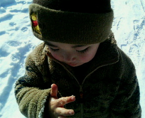 雪を食らう息子