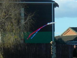 凧あげ裏庭