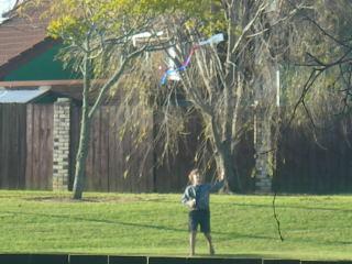 裏庭で凧あげ子供