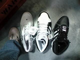 36.5cmの靴と私の足
