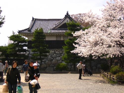 松本城+024_convert_20100723215701