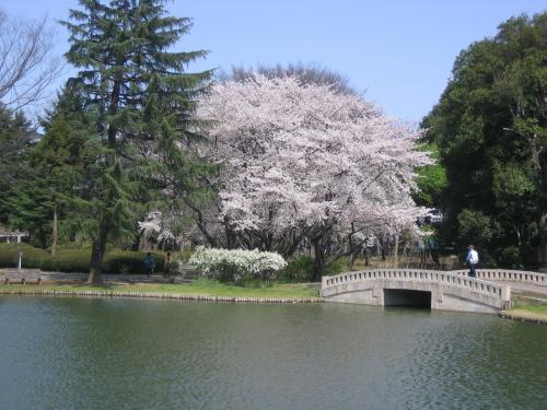 忍城+001_convert_20100910224117