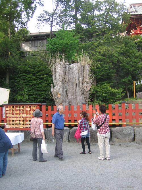 鎌倉20110502 006