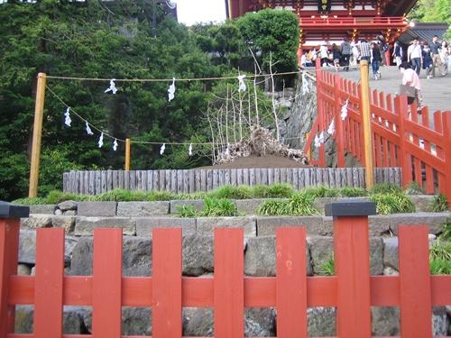 鎌倉20110502 008