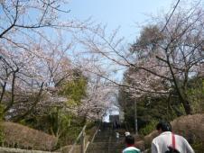 足羽山公園1