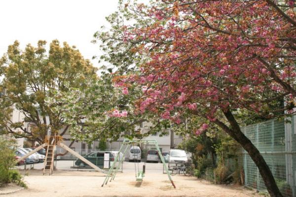公園風景1