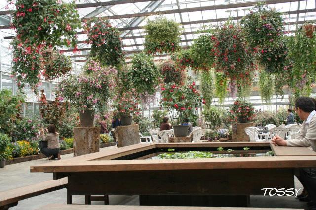 お花のテーブル