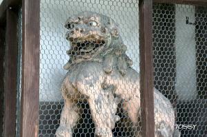 古い狛犬2