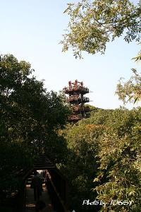 画像9 展望塔