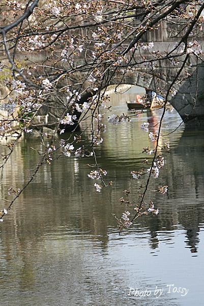 倉敷川と舟流し
