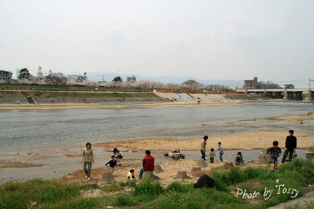 武庫川左岸 尼崎側3 水辺