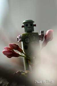 桜とロボット2