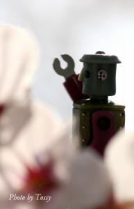 桜とロボット3